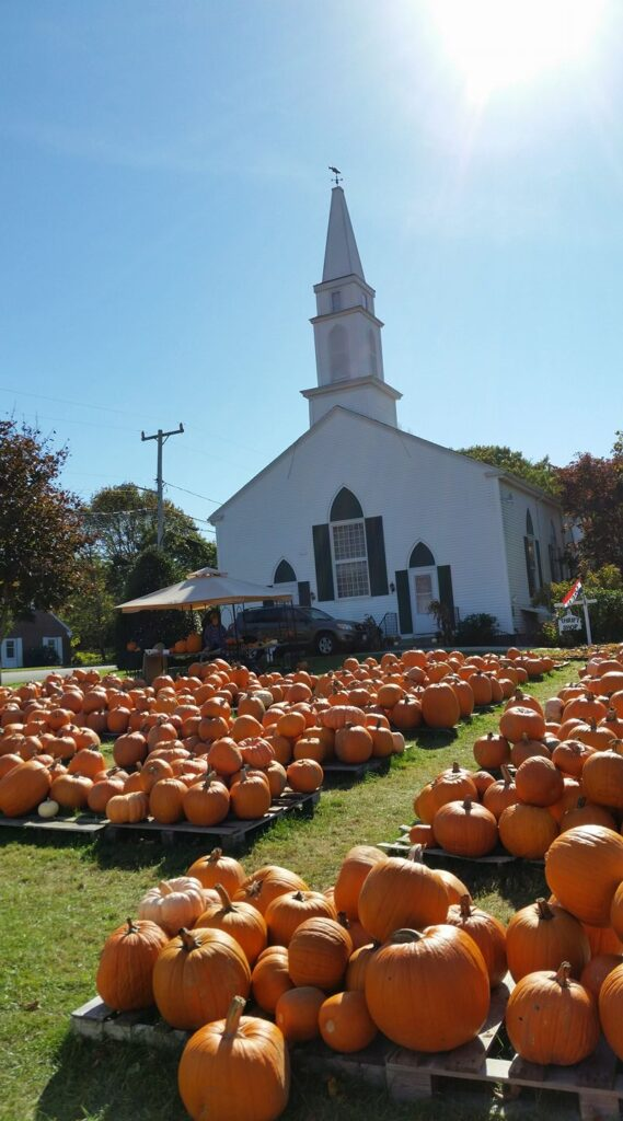 We hAnnual Pumpkin Patch opens in late September through Octoberope you'll visit our annual Pumpkin Patch. First load arrives this year (2020) on Sept 26,