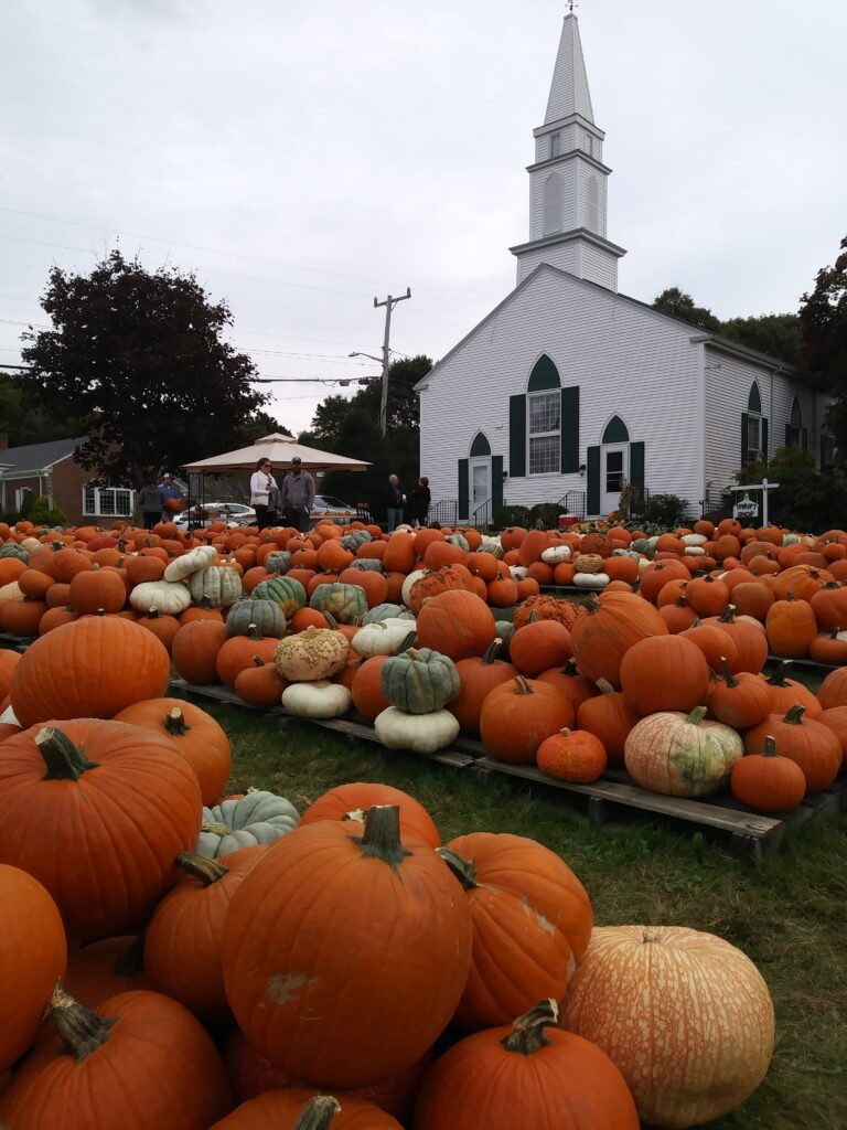 Our annual Pumpkin patch. The first truckload of pumpkins arrived Sept 26, 2020. We will be open daily through the end of October