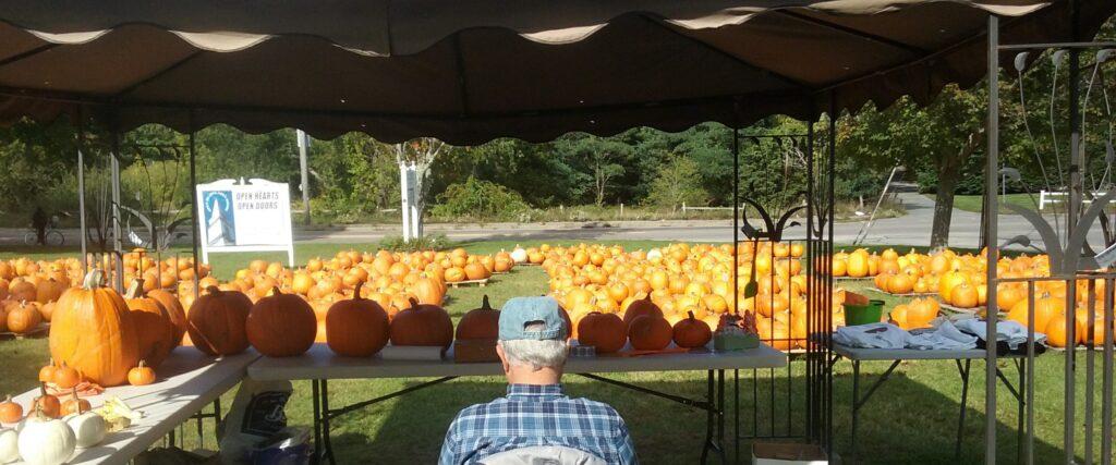 wycc working pumpkin patch